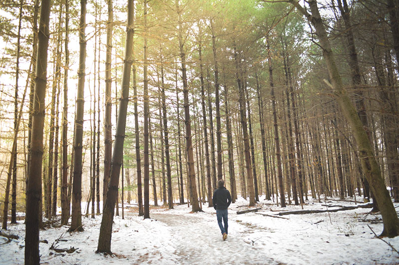 Man alone in a forest